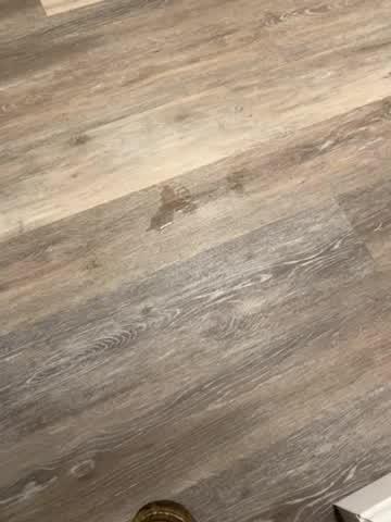 Video by Grace