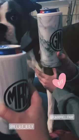 Video by Madi R.